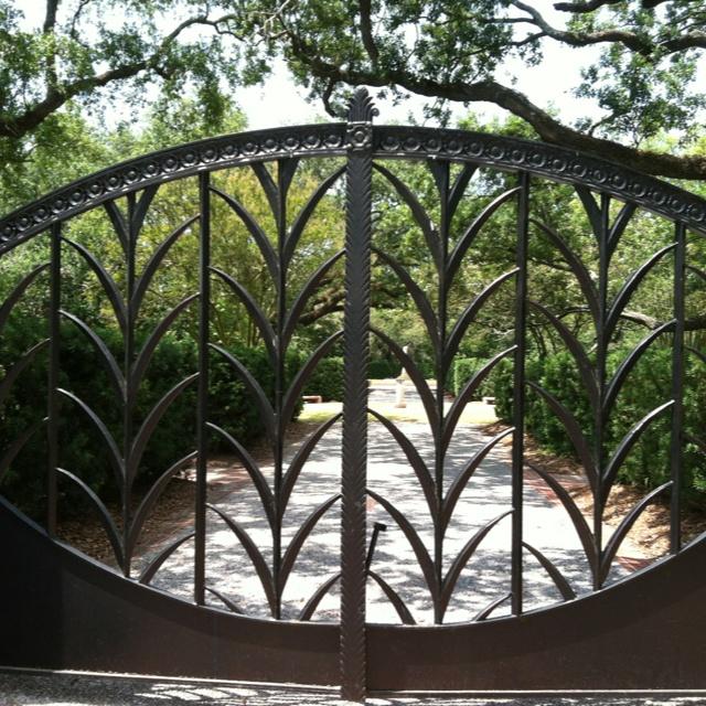 Die Besten 17 Bilder Zu Grand Old Oak Trees Auf Pinterest South Carolina B Ume Und New Orleans