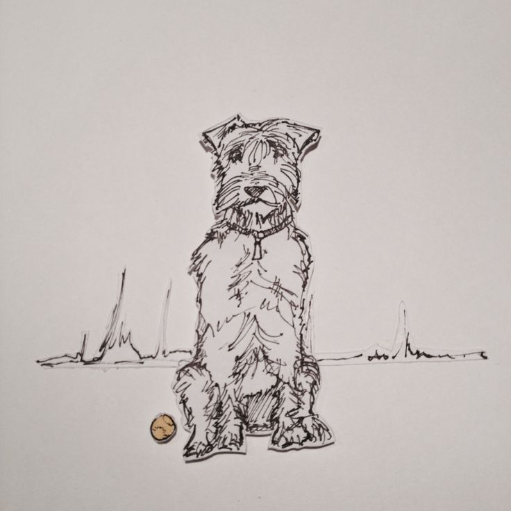 Dog pen and ink plus ball and splash of yellow