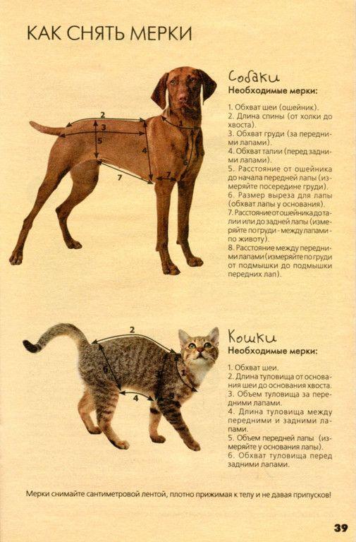 Книга одежда для собак скачать бесплатно