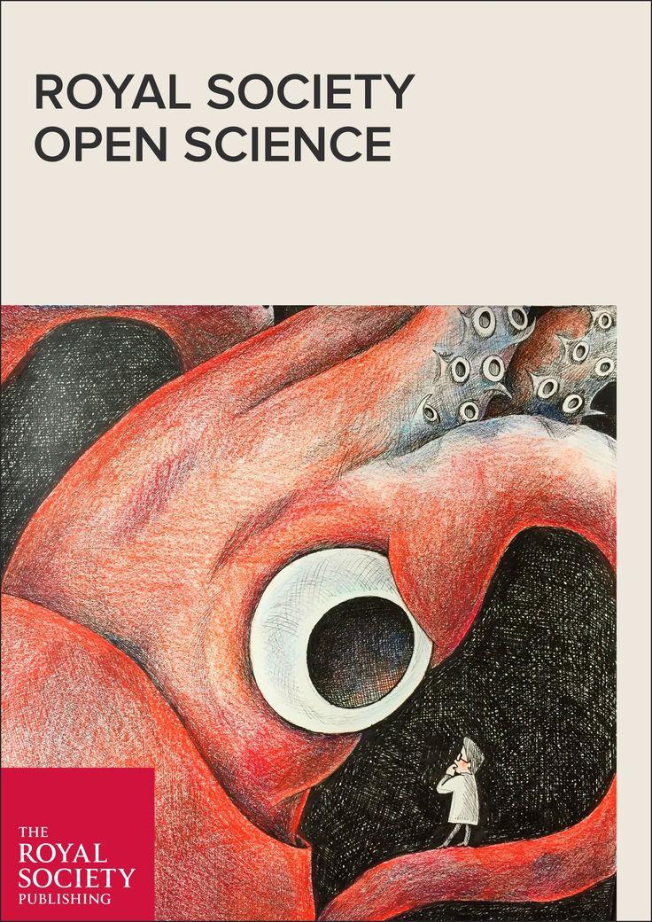 Cuvier's beaked whale sonar responses