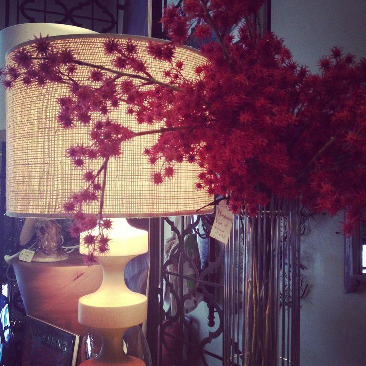 Loving the new displays at Bowerbird ! Red berry season aplenty