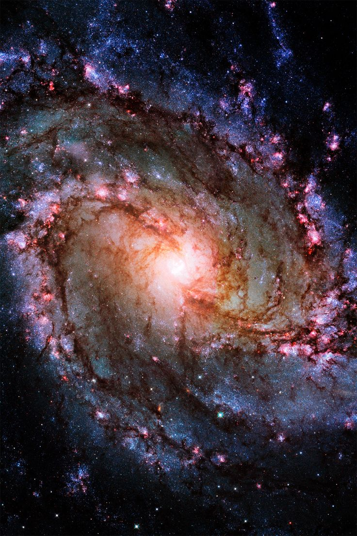This new Hubble image shows the spiral galaxy Messier 83, otherwise known as the Southern Pinwheel Galaxy. This galaxy is dramatic and mysterious; it has hosted a large number of supernova explosions, and is thought to have a double nucleus lurking at its core. http://spacetelescope.org/news/heic1403/ AND http://infinity-imagined.tumblr.com/post/73545042127/spiral-galaxy-m83