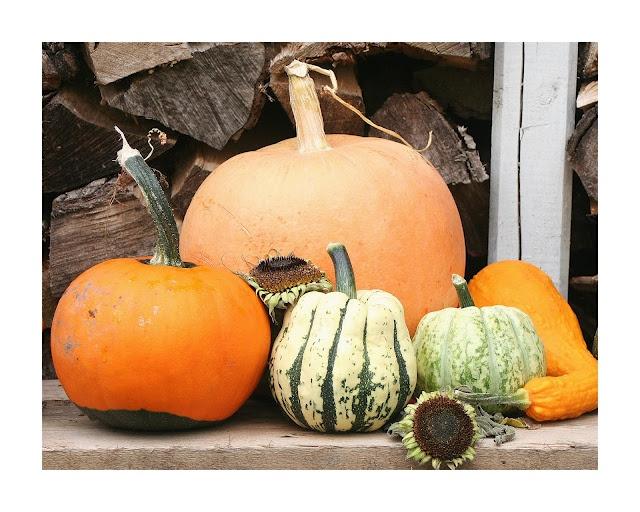 Verkoop je je huis in de herfst? Vrolijk je tuin/balkon dan op met vrolijk gekleurde pompoenen!