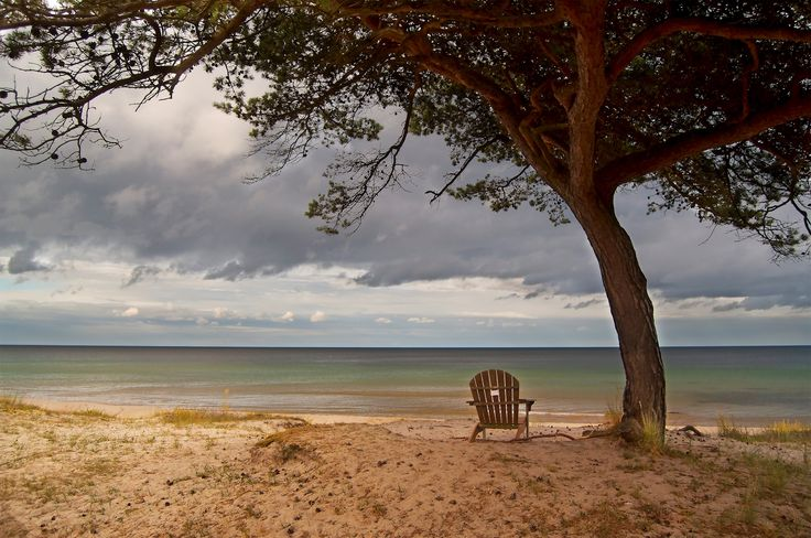 Joni Timonen - Solstol Österlen. Lonley chair on the beach below a tree. Available as poster and laminated picture at Printler, the marketplace for photo art.