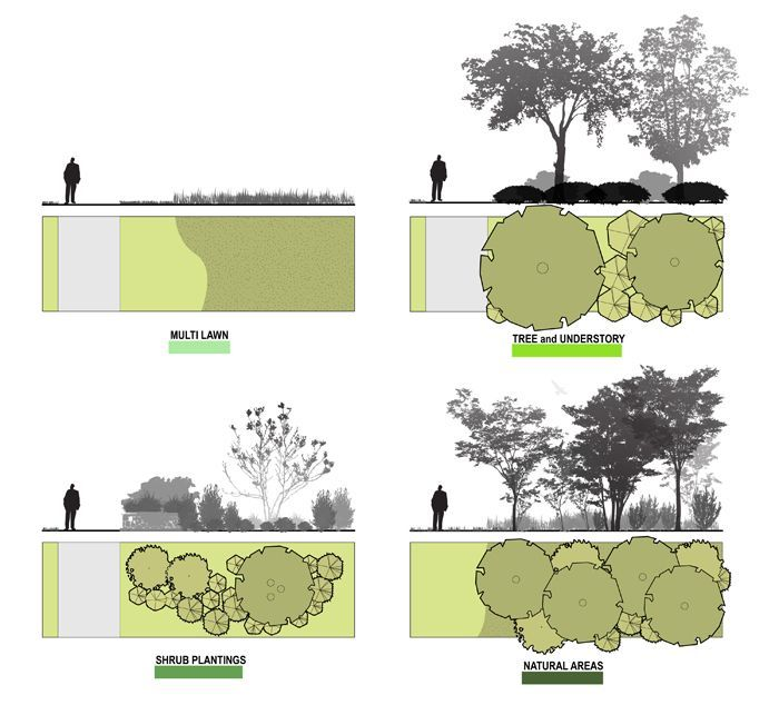 Architecture Drawing Trees