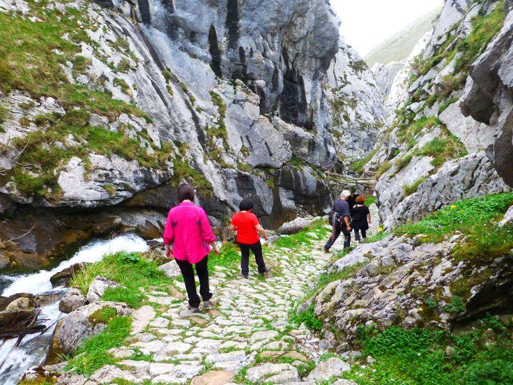 """Te invitamos a dar un paseo por un monumento natural """"Les Foces de El Pino"""" una ruta de fácil acceso y de gran belleza desde el pueblo de El Pino en el municipio de Aller Asturias España"""