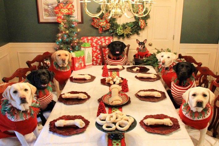 Χριστουγεννιάτικο τραπέζι για σκύλους