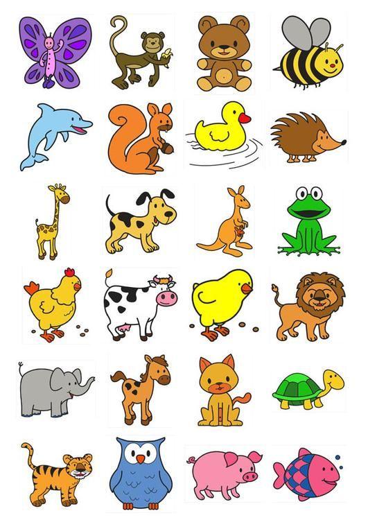 Taal, lexico-semantiek, thema dieren, eenvoudige prenten.