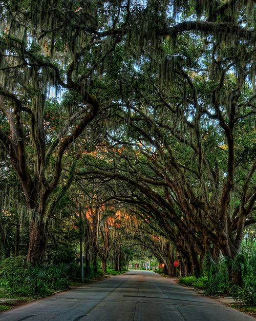 """Saint Augustine, Florida near the """"Fountain of youth"""" I haven't travelled all over the world but I can't imagine there are many places more beautiful than this."""