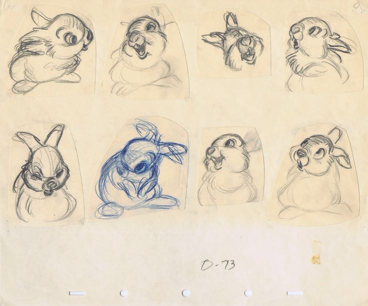 Concept Character Design Tutorials : Best drawing rabbits images on pinterest draw rabbit