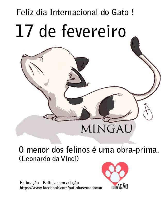 17 de fevereiro Dia Mundial do Gato #gatos #cats: Cat