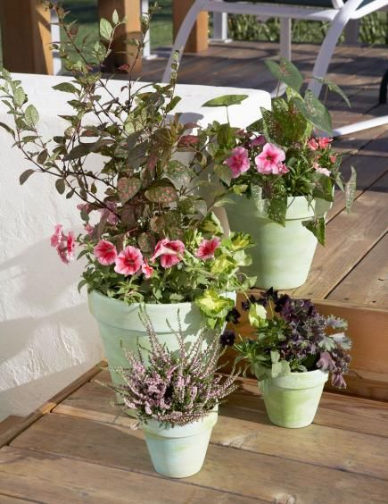 1000 images about deck decor on pinterest dress up for Decorating patio with potted plants