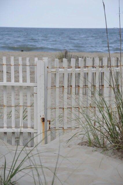The Beach                                                                                                                                                                                 Mehr