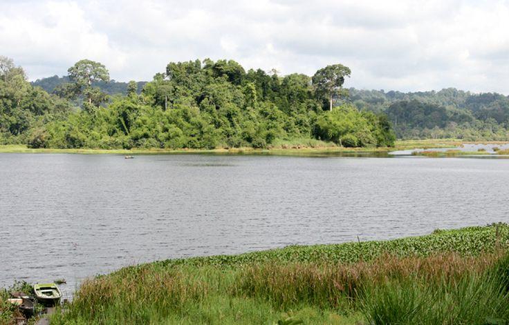 Cat Tien National Park - master