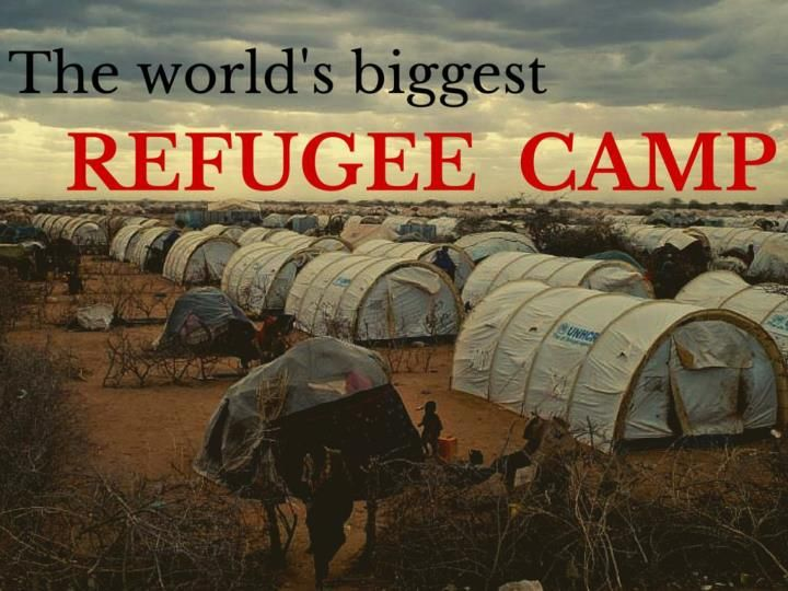 About 350,000 or so Somalis live in the sprawling Dadaab refugee camp in northeast Kenya.\n