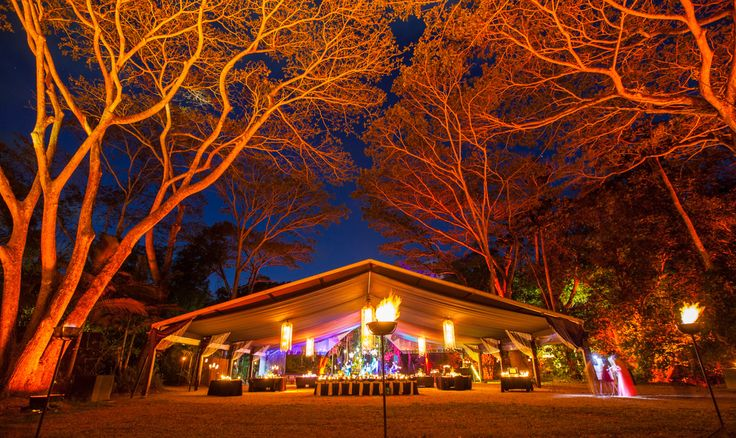 The ultimate venue in the forest!