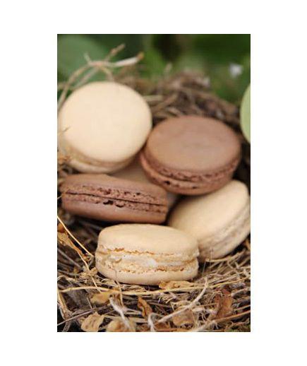 Semi-Sweet Treats browns and neutrals