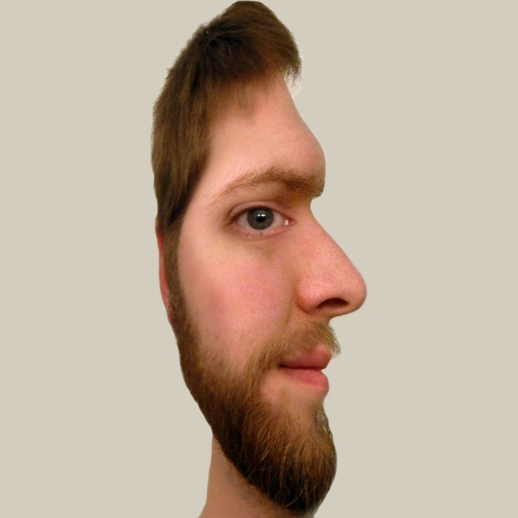 Face Illusion by *West-Ninja on deviantART