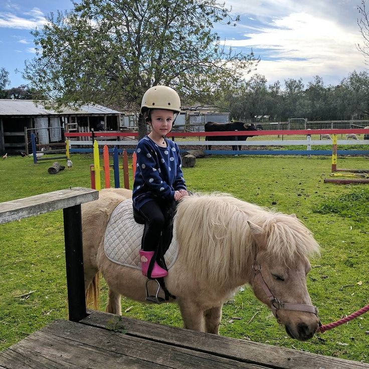 Birthday party fun on the farm  #pony #fun #farm #letsride #nofilter #outbackminiaturefarm #moolap #geelong #birthday