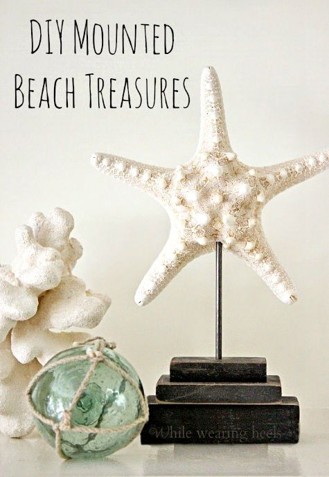 DIY Starfish Stand. Featured on Completely Coastal: http://www.completely-coastal.com/2015/01/seashells-coral-driftwood-on-pedestal-stands.html