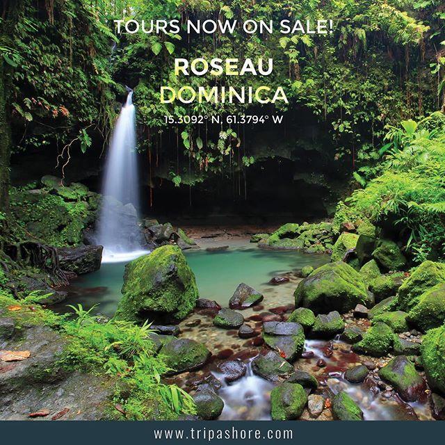 For a full range of tours covering destinations worldwide visit www.tripashore.com⠀⠀⠀⠀⠀ ⠀⠀⠀⠀⠀ #dominica  #roseau  #caribbean  #caribbeancruise  #caribbeantravel ⠀ ⠀ #cruise #tourism #shoreexcursion #cruisetour ⠀⠀ #traveltheworld #travelogue #wanderlust ⠀ ⠀ #pocruises #cunard #hollandamericacruiseline #hollandamerica #princesscruises #royalcaribbean #silversea #pocruisesaustralia #celebritycruises #norwegiancruiseline