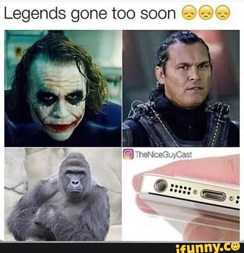 This is 1 of the 4 memes shown on this board. This meme shows 4 legends that have gone too soon all showing the Joker, some character that I do not know, Harambe, the dead gorilla, and the traditional 3.5 millimeter headphone jack.