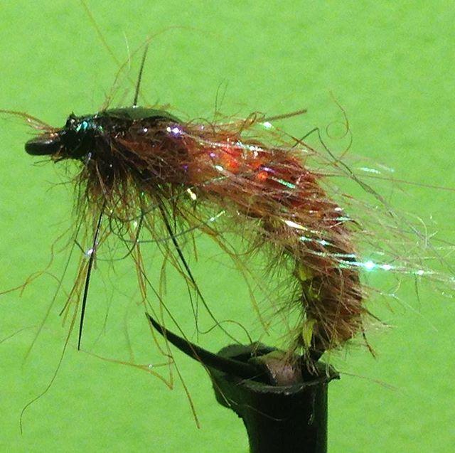 UV Caddis Pupa Size 12 #fliegenfischen #fliegenbinden #flytying #flyfishing #nymph #trout #troutfood #troutfishing #trouthunter #forelle #regenbogenforelle #bachforelle #asche #brountrout #enns #steyr #traun