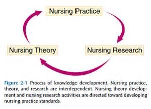 examining the development and testing of nursing theories The development of the discipline of nursing has gone through four stages: theorizing, developing a syntax, concept development, and philosophical debate these stages helped in shaping the characteristics of the discipline as a human science, a practice science, a science with social goals to.