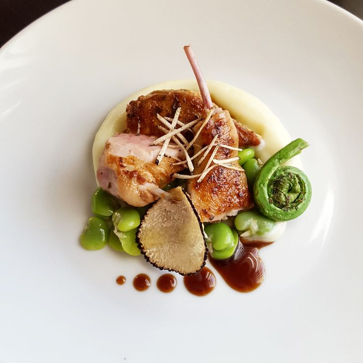 No Chef ^ _ ^ also plate / Roast Quail, Truffle, Cauliflower, Fiddle Heads, Broad Beans and Truffled Jus