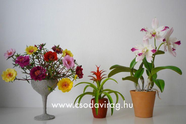 Clay flower - Colors, shapes and sizes ... Agyagvirág - Színek, formák, méretek...