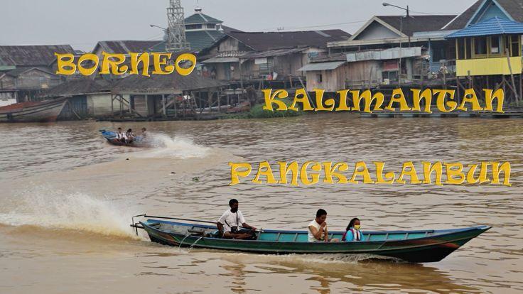 Wonderful Indonesia. Doprava v Pangkalan Bun - traffic on the river