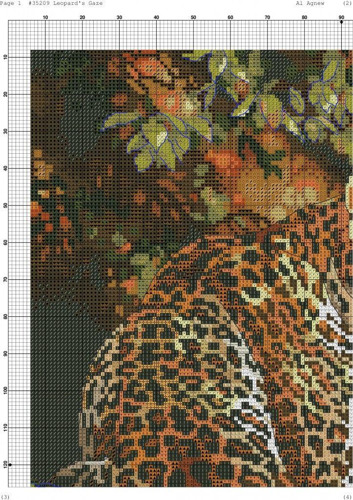 Leopard's Gaze-001
