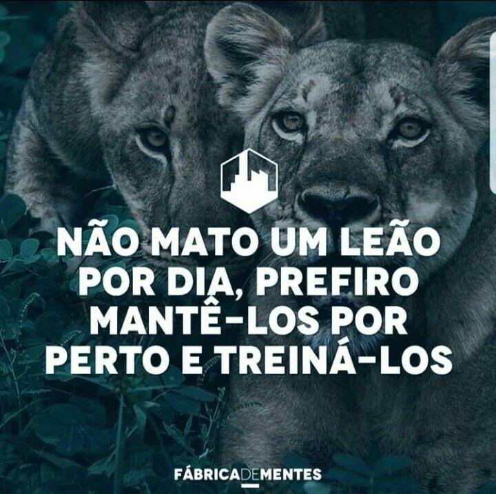 Pin De Fernando Santos Da Silva Em Leões E Lobos Frases