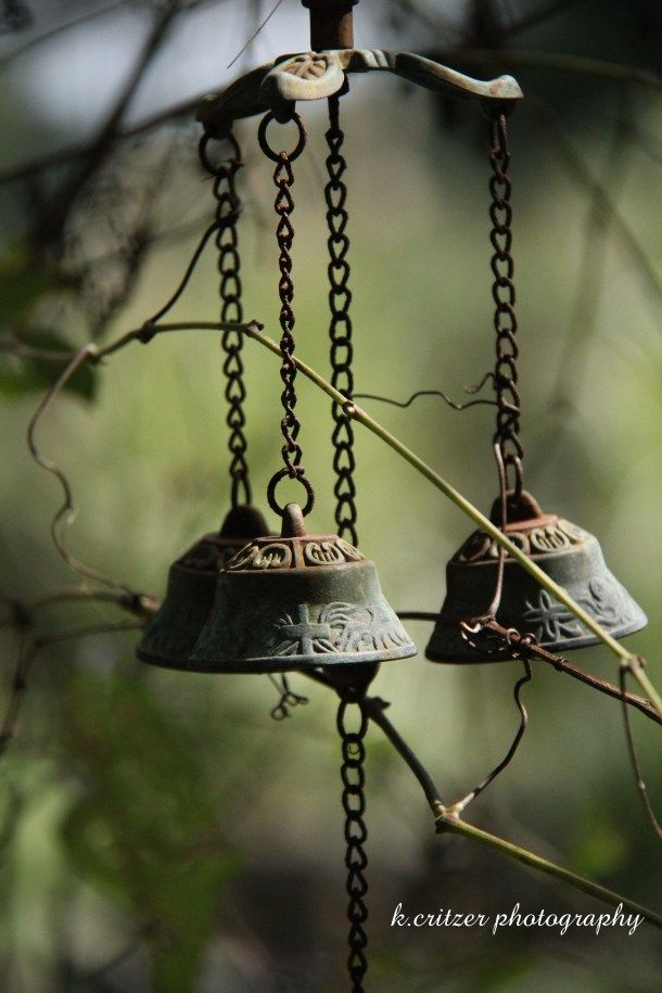 Beautiful old wind chimes and vines ... splendid textures and light
