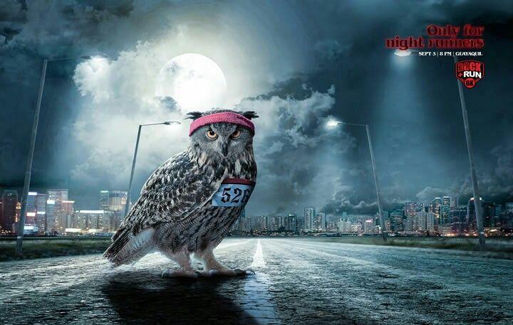 Publicidad Carrera Nocturna
