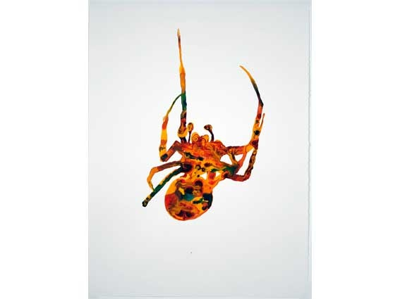 Neil Haddon  Spider20-5-08,  Acrylic on paper  77 x 57cm framed  Location: 2nd Floor CorridorHenry Jones Art Hotel - Online Art Catalogue - Painting