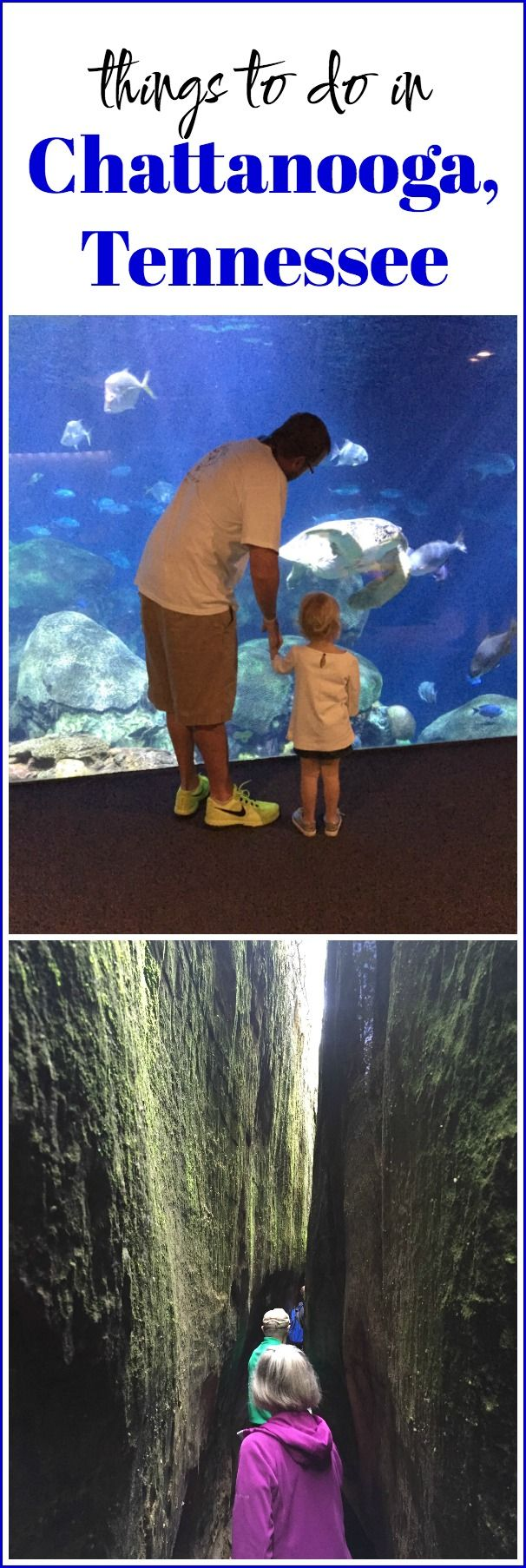 Things to Do in Chattanooga, Tennessee - a great spot for families!