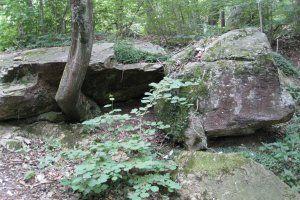 Wanderung zum Felsenmeer in Murrhardt // 45min