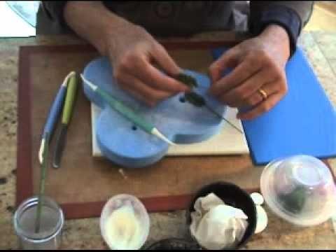 Making a Gumpaste Holly Leaf