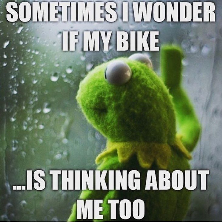 #bike #Mtb #biking #cycling #dreams #Kermit #dreaming #mountainbiking #roadbiking #bikeseason #dh #xc #singletrack #downhill #enduro #timetoride via http://ift.tt/225oUAM