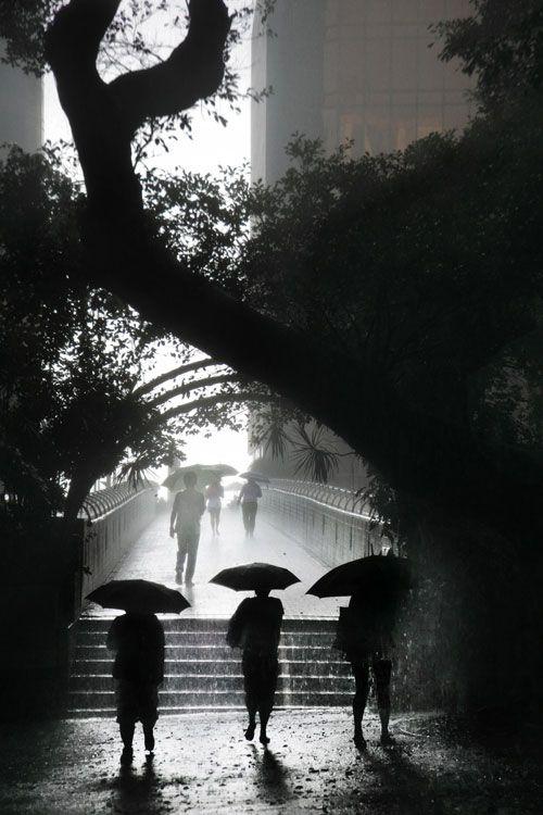 Cristophe Jacrot | Hong Kong sous la pluie