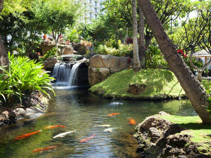 Westin Maui Resort & Spa in Kaanapali , Maui | Beautiful ...