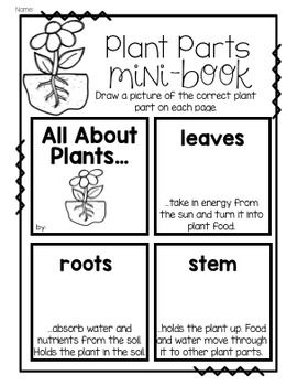 All about plants...journal, experiments, mini-booklets, printable a to go along with your plant unit! Check out all the fun plant activities.