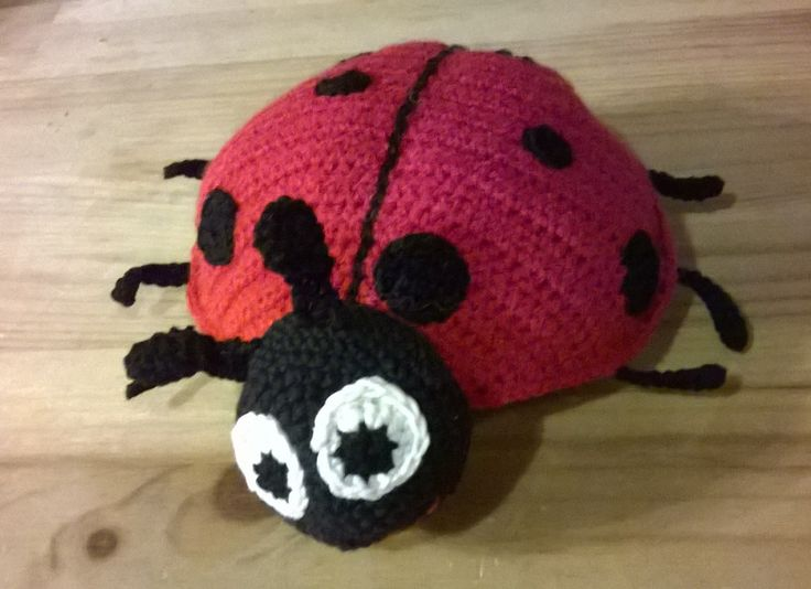 Biedronka / Ladybird
