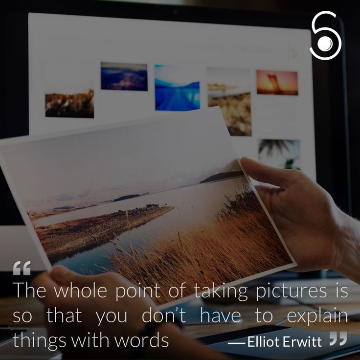 """""""The whole point of taking pictures is so that you don't have to explain things with words"""" - Elliot Erwitt"""