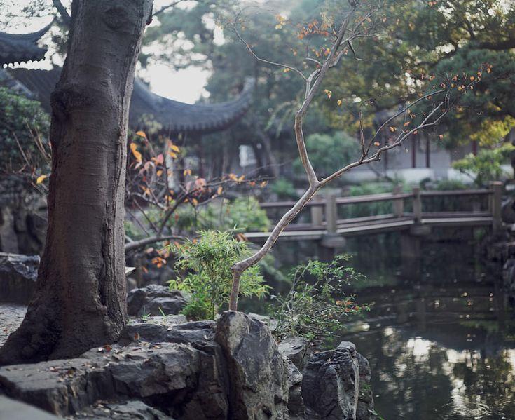 Master of the Nets Garden, Suzhou, China  18 Of The World's Most Beautiful Gardens – BoredBug