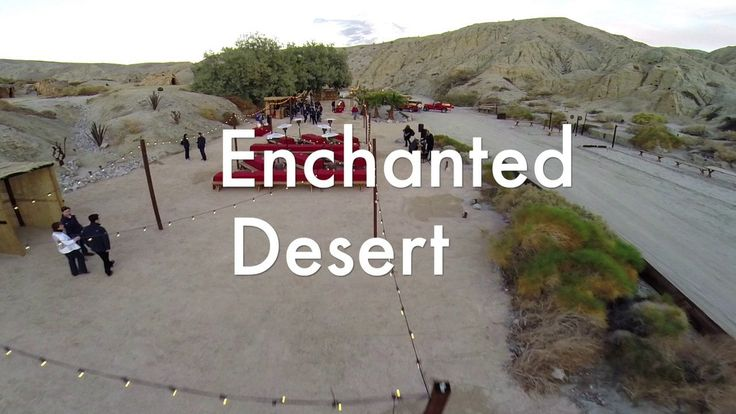 Desert Discovery Party
