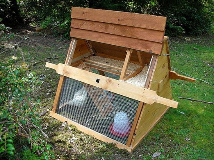 Small diy chicken coop livestock pinterest backyards for How to build a movable chicken coop
