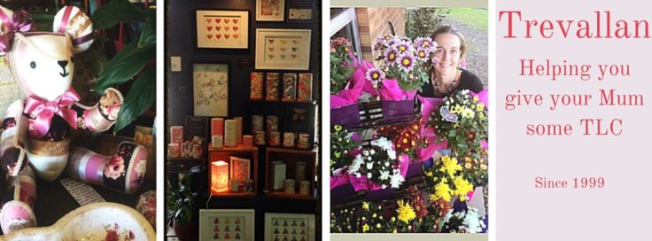 There really is something for everyone at Trevallan. No matter what you want to create, a new garden, a new you, scented home or a pot of flowers to brighten someone's day, the Trevallan Team is here to help you breathe life into it.