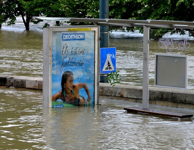 Surfing in the Flood (Budapest, 2013)